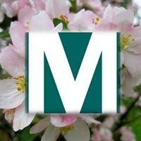 Martin Morris Agency