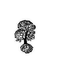 Sacred Acorn 519-491-5389