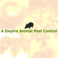 A Empire Animal Pest Control
