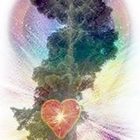 Sacred Earth Connections
