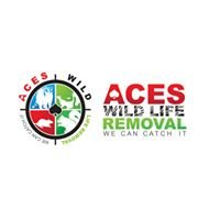 Ace's Wildlife Removal