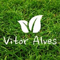 Vitor Alves- Construção e Manutenção de Espaços Verdes