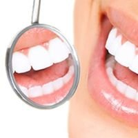 First Dental FL