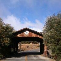 Stallion Springs Community