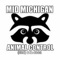 Mid Michigan Animal Control LLC