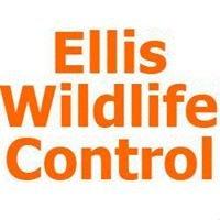 Ellis Wildlife Control