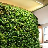 Creative R Green Walls