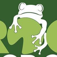 Frogs Floor Care