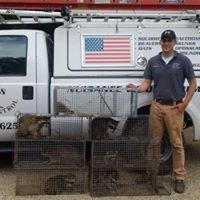 McGinnis Wildlife Control