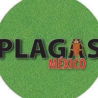 Plagas México