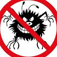 2Morrow Home Services Inc. - Pest, Termite, & Rodent Control
