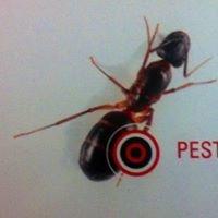 Pest-Tech