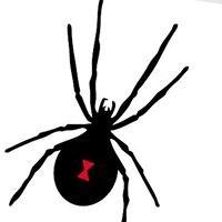 Innovative Pest Management PestControl702.com