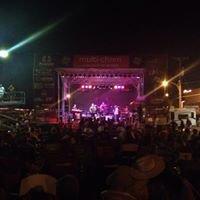 Simply Texas Blues Festival In San Angelo, Texas