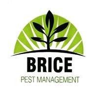 Brice Pest Management