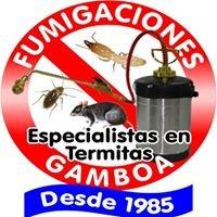 Fumigaciones Gamboa