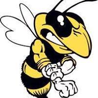 Bee Gone Pest Control, LLC