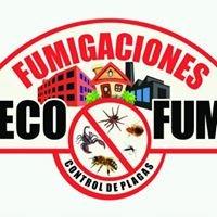 Fumigaciones Ecofum