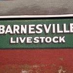 Barnesville Livestock