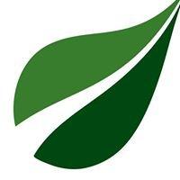 Nu-Leaf Landscaping