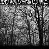 Dead Woods Haunted Forest