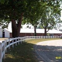 Williams County Fair