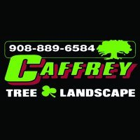 Caffrey Tree & Landscape