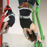 Aerial Dance Circus (ADC)