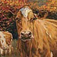 Pennsylvania Guernsey Breeders' Association