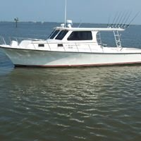Last Hurrah Charter Fishing