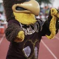 Freddy the Falcon
