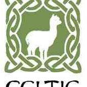 Celtic Knot Alpacas