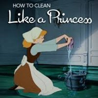 Princess Cleaning Inc