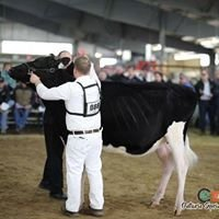 Claircrest Holsteins and Jerseys