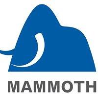 Mammoth Equipment Ltd