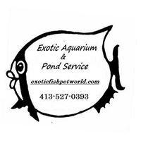 Exotic Fish & Pet World