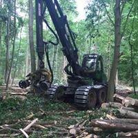 Forstunternehmen Pragst