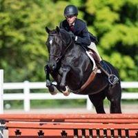 Chomar Equestrian