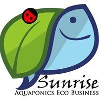 Sunrise Aquaponics Eco Business