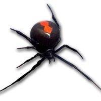 Wyong Pest Control