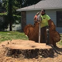 Ivester's Tree & Lawn LLC
