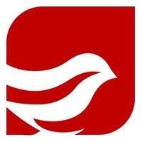Red Sparrow Construction Ltd