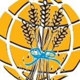 Seed Of Faith International