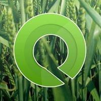 O.V.S - Importação e Exportação de Máquinas Agricolas, Lda