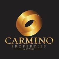 Carmino Properties Ltd - Projects Department
