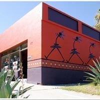 Zinongo Gallery