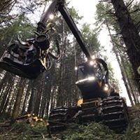 """L&L Inc. """"a forestry company"""""""