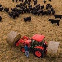 Burks Tractor Co