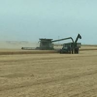 Brink Farms Custom Harvesting