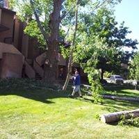 Advantage Tree Care Service